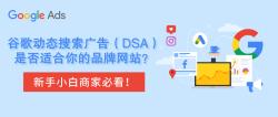 谷歌动态搜索广告(DSA)是否适合你的品牌网站?新手商家必看!