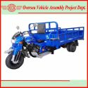 Gasoline/ CNG/ Diesel Cargo Tricycle Series