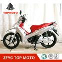 ZF110-13