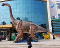Brachiosaurus(AD-008)