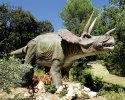 Triceratops(AD-133)