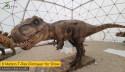 Slovakia Dinopark Tatry Video