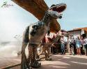T-rex Costume(DC-048)