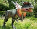 Dilophosaurus(AD-281)