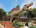Kawah dinosaur promotes dinosaur culture to the world.