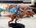 T-Rex Ride(ADR-800)