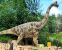 Brachiosaurus(AD-293)