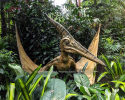Pterosauria(AD-051)