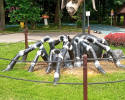 Spider(AI-1710)