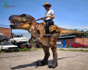 Riding Dinosaur Costume(DC-045)