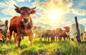 Mineral premix for beef cattle