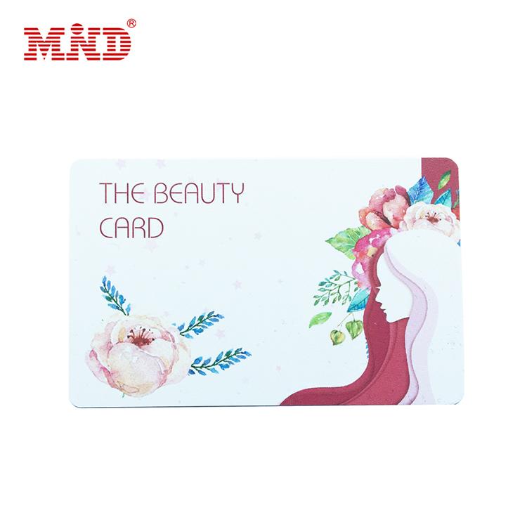 festivaI activity gift card